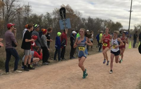 Spartans find success at state cross country meet