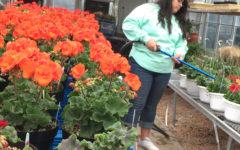 Community enjoys Hort plants