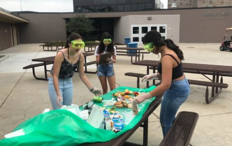 Trashy project:  APES students sort, classify student waste