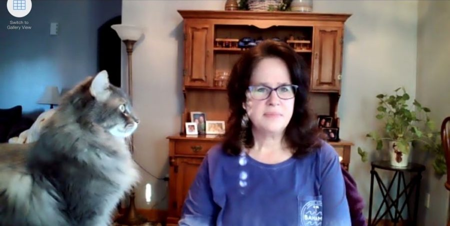 Ms. Kim Fisher's cat interrupts class via the Zoom conference call.